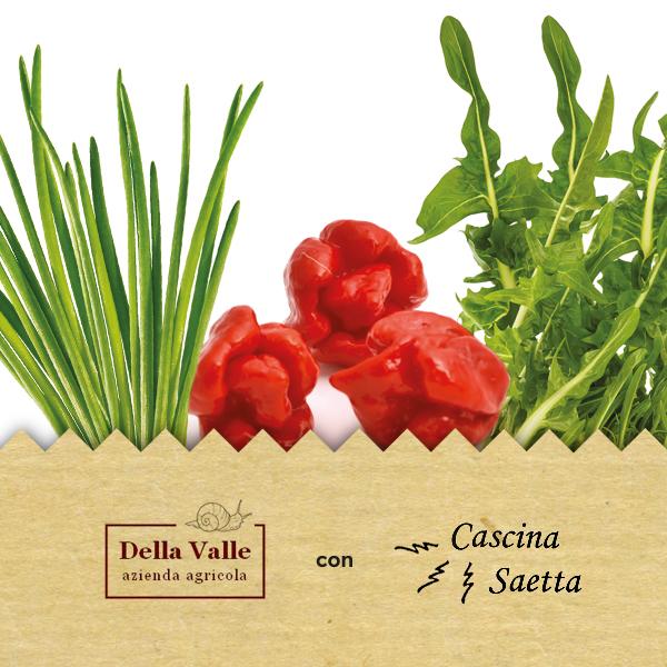 dellaValle1